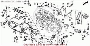 Honda Accord Wagon 1992  N  Wgn Ex  Ka Kl  Engine Wire