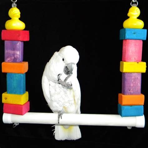 bird swing  macaws  cockatoos