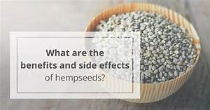 Hempseeds Benefits  Are They Healthy