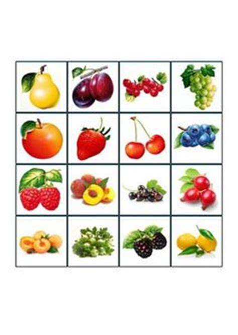 gesundes gemüse im winter obst und gem 195 188 se memory sachunterricht