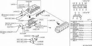Nissan Stanza Plug Blind  Egr  Exhaust  Intake