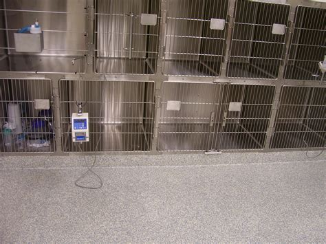 epoxy flooring veterinary vet facilities animal hospital flooring sterile kennels chemical resistant flooring