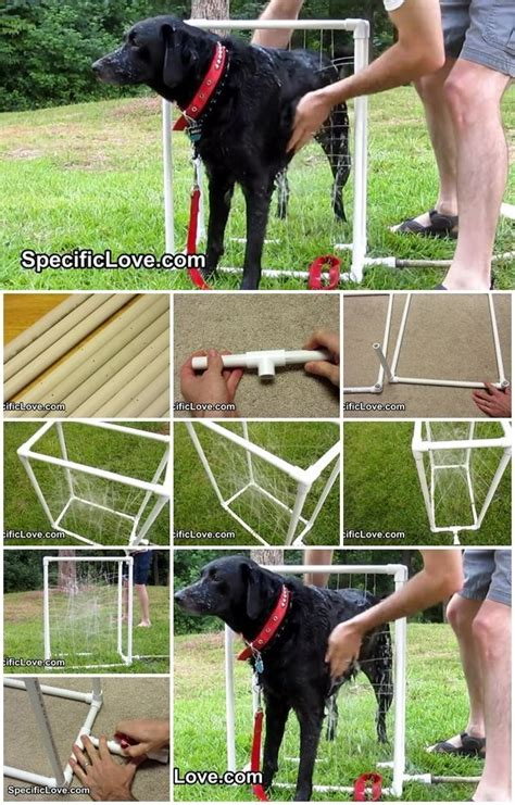 images  diy dog projects  pinterest
