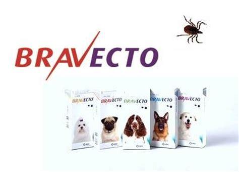 nyheter gardsveterinaererna veterinaer  falkenberg