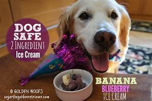 Dog treat recipes golden woofs for Dog ice cream ingredients
