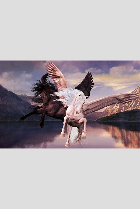 Fantasy art pegasus artwork wallpaper | 1920x1200 | 256827 | WallpaperUP
