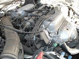 Quick Help Needed  F22b Firing Order - Honda-tech
