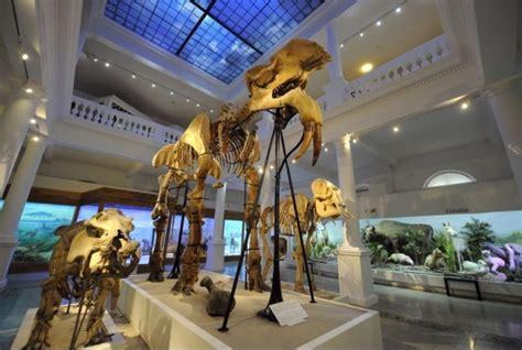 Noaptea muzeelor 2012 - Muzeul Antipa - YouTube