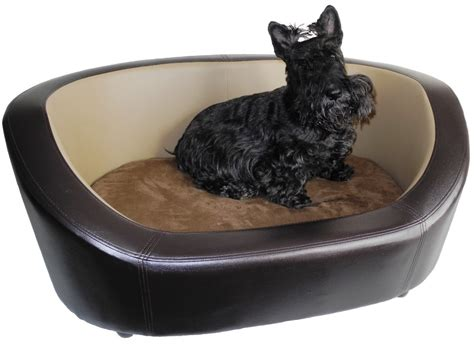 Trusty Pup Bed by Trusty Pup Bed Cover Mygreenatl Bunk Beds Popular