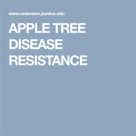 APPLE TREE DISEASE RESISTANCE | Apple tree, Disease, Apple