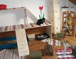 Kaninchengehege Bauen Innen : mein hoppelhausen kaninchen ~ Frokenaadalensverden.com Haus und Dekorationen
