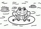 Coloring Frog Nature Printable Sheets Frogs Drawing Scenes Coqui Toad Cartoon Cycle Preschool Around Getdrawings Getcolorings Animal Popular Worksheets Scene sketch template