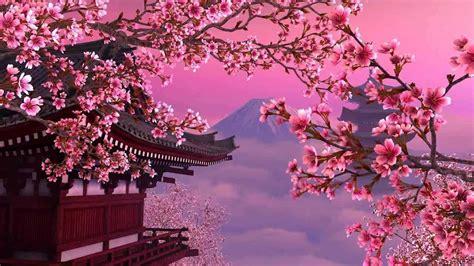 gambar wallpaper pemandangan bunga sakura gudang wallpaper