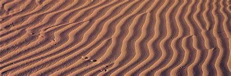 chihuahuan desert   mexico wwf