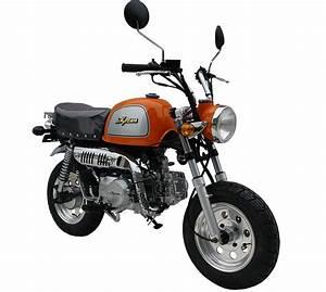 A1 Motorrad Kaufen : gebrauchte und neue skyteam gorilla 125 motorr der kaufen ~ Jslefanu.com Haus und Dekorationen