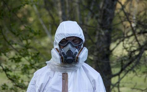 asbestos inspection     dreams