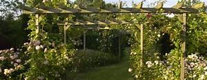 Pergola Pour Plante Grimpante : pergolas en planta nos conseils de grimpantes qui aiment ~ Premium-room.com Idées de Décoration