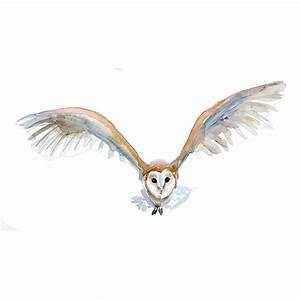 Barn Owl flying watercolor painting - Fine Art print - Zen ...