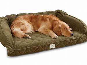 8 awesome gifts that your dog would love for christmas With best odor resistant dog bed