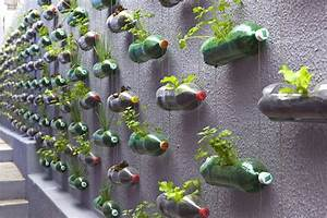 An urban vertical garden built from hundreds of recycled