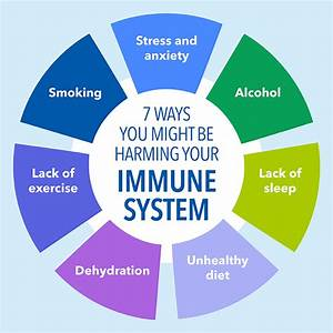 7 Ways You Are Harming Your Immune System