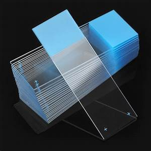 Microscope Slides from Globe Scientific - Producers of ...