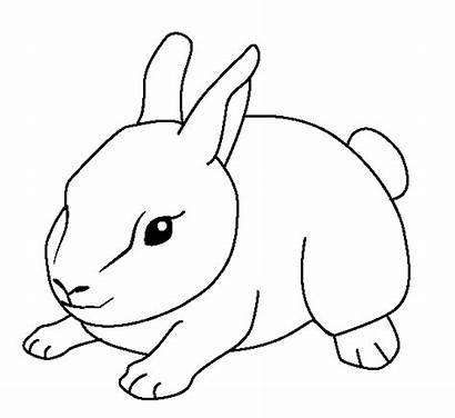 Coloring Animal Pages Bunny Animals Farm Fun