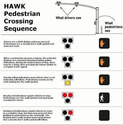Hawk Crosswalk Pedestrian Signal System Activated Traffic