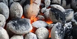 Holzkohle Oder Briketts : grillbriketts lange brenndauer kleinster mobiler gasgrill ~ Orissabook.com Haus und Dekorationen