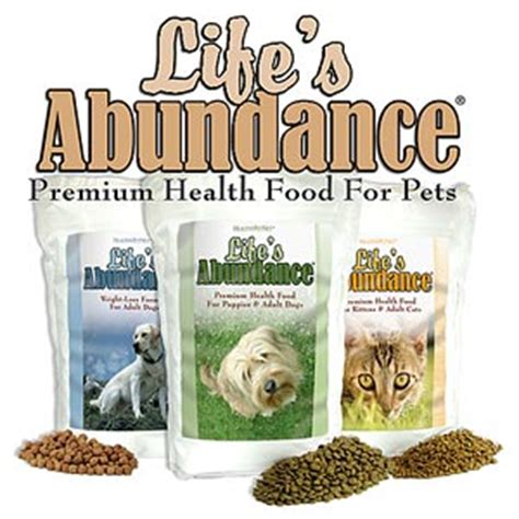 food names for cats cat names place life s abundance cat and dog food review