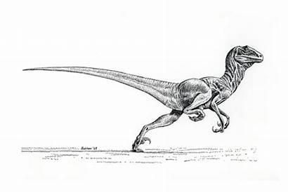 Ostrom Bakker Dinosaurs John Happy Birthday Deinonychus