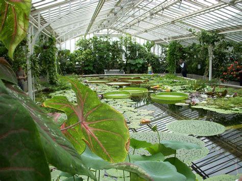 Munich Botanic Garden (botanischer Garten München)