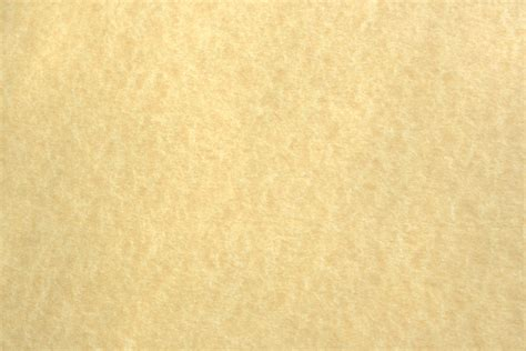 parchment color light colored parchment paper texture picture free