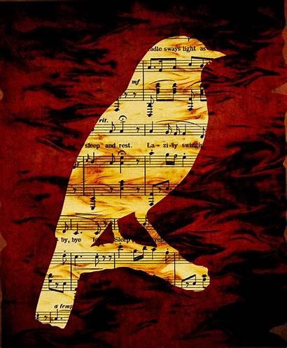 Notes Silhouette Musical Bird Sheet Domain Publicdomainpictures