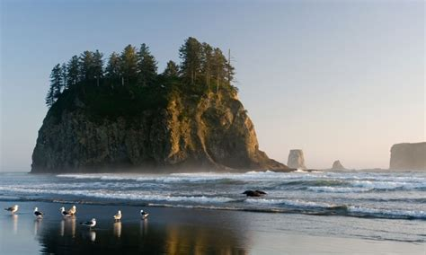 port angeles tourism attractions olympic park peninsula