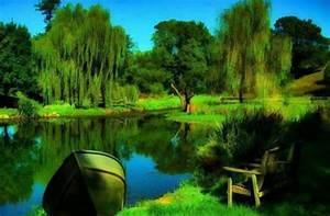 beautiful nature hd wallpaper widescreen
