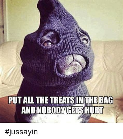 Put The Memes In The Bag - put all the treats in the bag andnobodygets hurt jussayin dank meme on sizzle