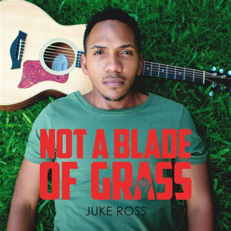 lu mobil juke from guyana with juke ross 39 quot not a blade of grass