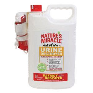 natures miracle urine destroyer intense urine stain