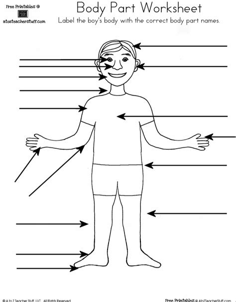 body part worksheet boy  girl    teacher stuff