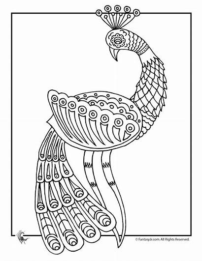 Coloring Peacock Pages Adult Therapy Colouring Adults