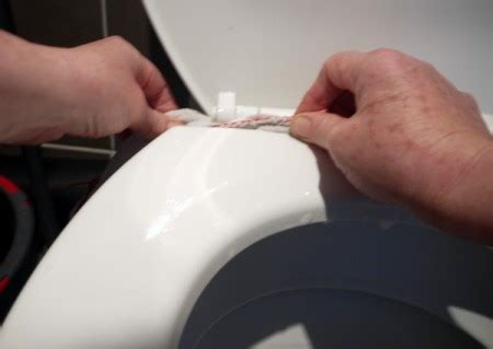 cleaning  toilet thriftyfun