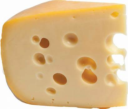 Cheese Holes Pixel Max Tyro Divination Word