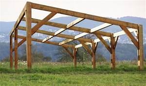 Hangar En Kit Bois : b timent d montable monopente kit douglas abri jardin ~ Premium-room.com Idées de Décoration