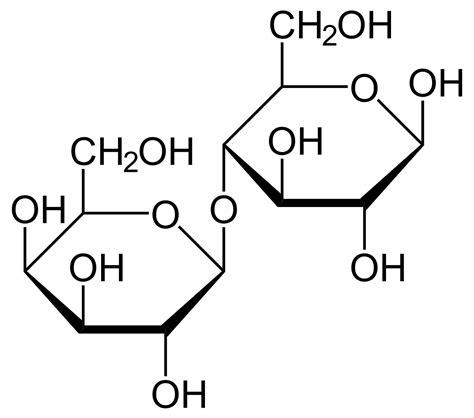 Lactose Intolerance Wikipedia