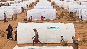 Installation: Model UNHCR Refugee Camp by Dee E — Kickstarter