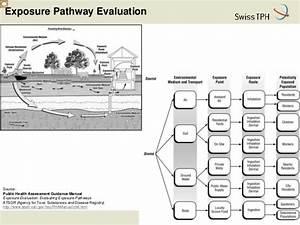 Exposure Assessment In Environmental Contaminated Areas