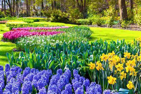 giardino vita la vita 232 come un giardino benesserecorpomente it