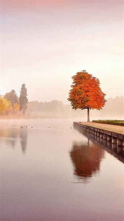 Iphone Autumn Nature Landscape Trees Wallpapers Background