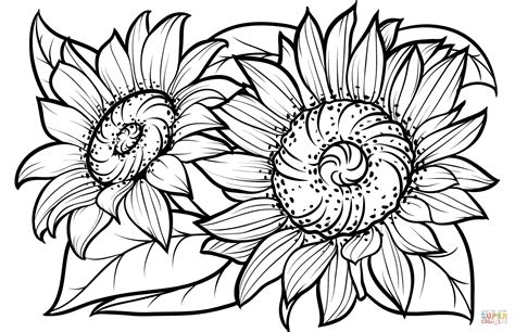 sunflower coloring pages federalgrantsource